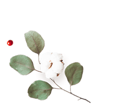 http://avala.bold-themes.com/autumn/wp-content/uploads/sites/2/2020/12/floating_image_flower_01.png