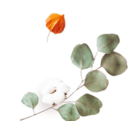 http://avala.bold-themes.com/autumn/wp-content/uploads/sites/2/2020/12/floating_image_flower_02.png
