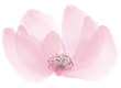 http://avala.bold-themes.com/wp-content/uploads/2021/02/flower_summer.png